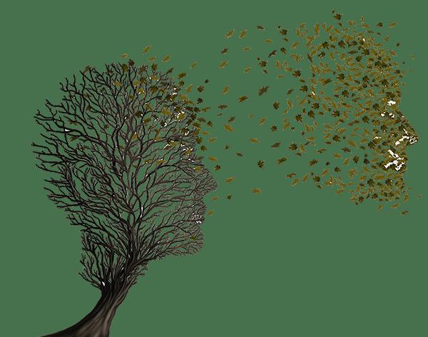 mind-tree-right